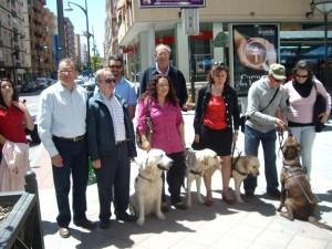 Imagen de nuestra asociacion de perros guía en Calasparra