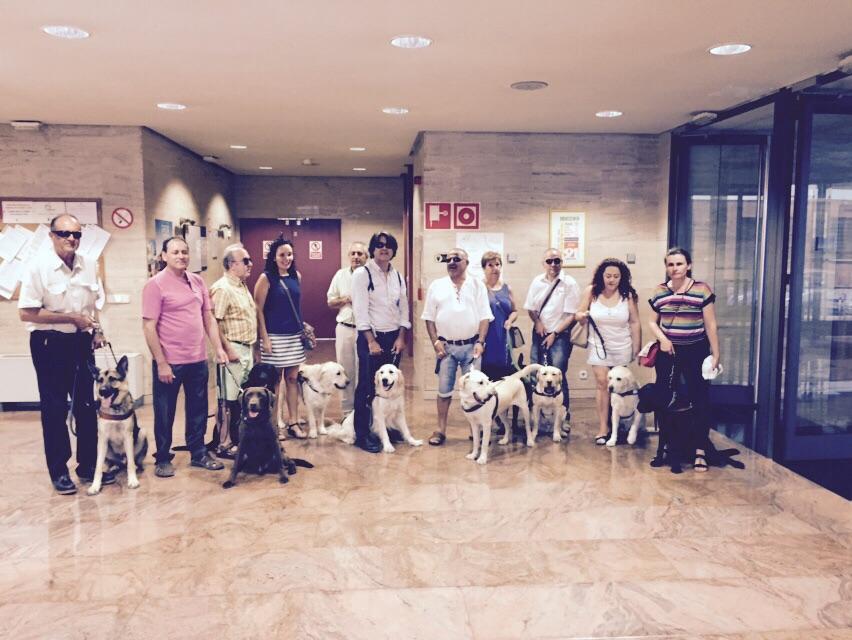 Varios de nuestros socios posando en la foto con perros guía.